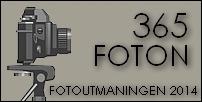 365 foton 2014