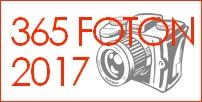 365foton